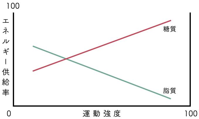 運動強度 グラフ
