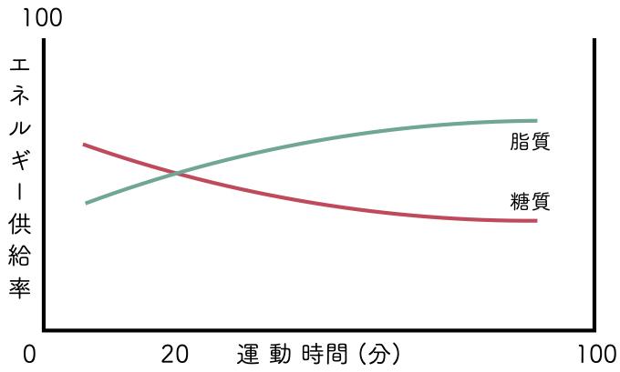 運動時間 グラフ