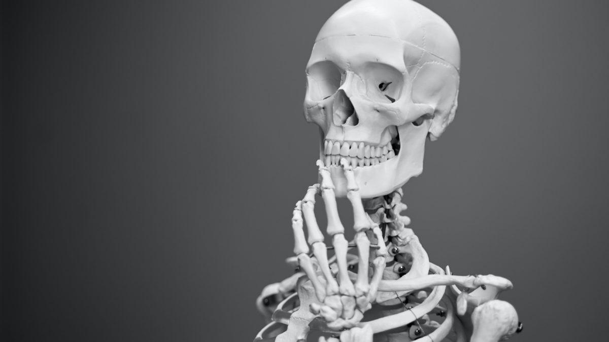 筋トレで骨密度が増加するって本当?骨粗しょう症への対策
